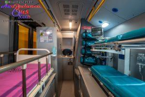 health check bus